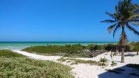 Plaża w El Cuyo, Meksyk Zdjęcie Stock