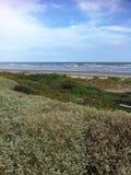 Plaża w Galveston, TX Zdjęcia Royalty Free