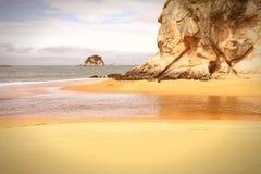 Plaża w Nowa Zelandia Obrazy Royalty Free