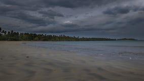 Plaża w ranku tle zdjęcia stock