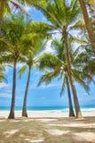 Plaża w zmierzchu czasie Fotografia Royalty Free