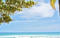 Plaża w zmierzchu czasie Zdjęcia Royalty Free