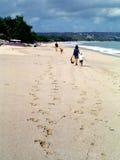 plaży bali rodzina Indonesia dni Fotografia Royalty Free
