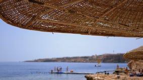 Pla?a z parasolami i Sunbeds w Egipt na Czerwonym morzu pogodny kurort na rafy wybrze?u zbiory