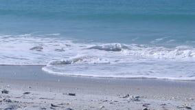 Plaża zawijasy Zdjęcie Royalty Free