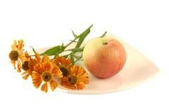 Plaat met appel en een bloem Stock Foto's