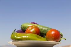 Plaat met groenten Royalty-vrije Stock Afbeeldingen