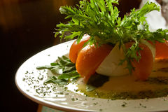 Plaat met kaas, tomaten, greens en saus Royalty-vrije Stock Afbeelding