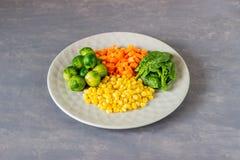 Plaat met kool, wortelen, graan en spinazie Het gezonde Eten stock fotografie