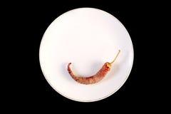 Plaat met paprika wordt verfraaid die Royalty-vrije Stock Fotografie