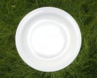 Plaat op gras stock foto's