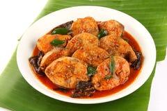 Plaat van cuisine- van Kerala Kruidige vissenkerrie royalty-vrije stock foto