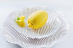 Plaat van de citroen de Witte Keramiek royalty-vrije stock foto's