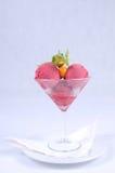Plaat van fijn dessert - frambozensorbet Stock Afbeelding