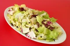 Plaat van gemengde salade Stock Foto's