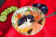 Plaat van heerlijke soep met kip, deegwaren en basilicum Royalty-vrije Stock Foto