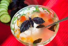 Plaat van heerlijke soep met kip, deegwaren en basilicum Royalty-vrije Stock Afbeeldingen