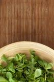Plaat van salade Royalty-vrije Stock Foto