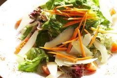 Plaat van salade Royalty-vrije Stock Afbeelding