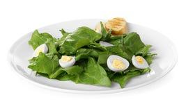 Plaat van salade met kwartelseieren en geïsoleerde spinazie Royalty-vrije Stock Afbeelding