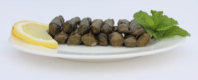 Plaate of Stuffed Vine Leaves Royalty Free Stock Photography