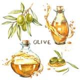 Plaats a-tak van rijpe groene olijven is sappig gegoten met olie Dalingen en plonsen van olijfolie Waterverf en botanisch royalty-vrije illustratie