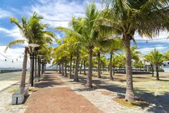 Plaats voor een wandeling, de kust van Manilla stock fotografie