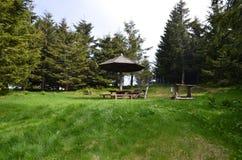 Plaats voor picknick Royalty-vrije Stock Foto