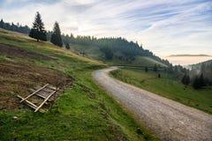 Plaats waar sheeps door de weg in bergen bij sunris worden geschoren Stock Foto