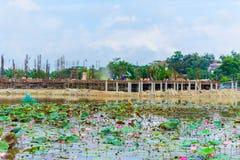 Plac budowy z nowym stwarza ognisko domowe rzecznych lotosowych kwiaty Zdjęcia Stock
