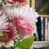 plac bukiet róż Obrazy Royalty Free