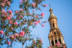 Plac De Espana Zdjęcia Royalty Free