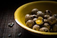 Placa amarela completamente de ovos de codorniz fotografia de stock