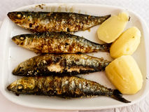 Placa asada a la parrilla de las sardinas con la patata fotografía de archivo libre de regalías