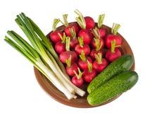 Placa com os vegetais da cebola do pepino, do rabanete e da mola no branco Foto de Stock