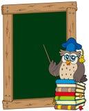Placa com professor e livros da coruja Fotos de Stock
