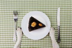 Placa con el pedazo de torta de chocolate Imagen de archivo libre de regalías