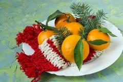 Placa con la mandarina y la bufanda hecha punto Fotografía de archivo