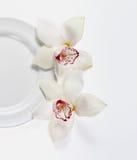 Placa con las flores Fotos de archivo libres de regalías