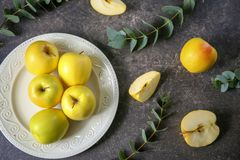 Placa con las manzanas amarillas maduras Fotografía de archivo libre de regalías