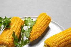 Placa con las mazorcas de maíz maduras y perejil en fondo gris imágenes de archivo libres de regalías