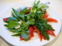 Placa con las verduras Fotos de archivo