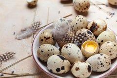 Placa con los huevos de codornices adornados con la pluma Alimento biológico Estilo rústico Fotos de archivo