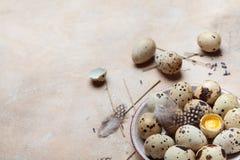 Placa con los huevos de codornices frescos adornados con la pluma Alimento biológico Estilo rústico Fotografía de archivo