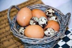 Placa con los huevos de codornices y los huevos del pollo Huevos de codornices en un cuenco de madera Lugar para el texto dieta d Imagen de archivo