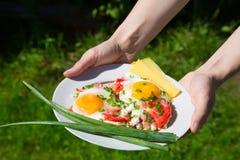 Placa con los huevos, las cebollas verdes y los tomates Fotos de archivo