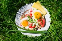 Placa con los huevos, las cebollas verdes y los tomates Fotografía de archivo