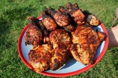 Placa da galinha grelhada 2 Foto de Stock