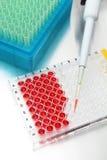 Placa da pesquisa da ciência com as amostras carregadas Fotos de Stock