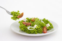 Placa da salada Imagens de Stock